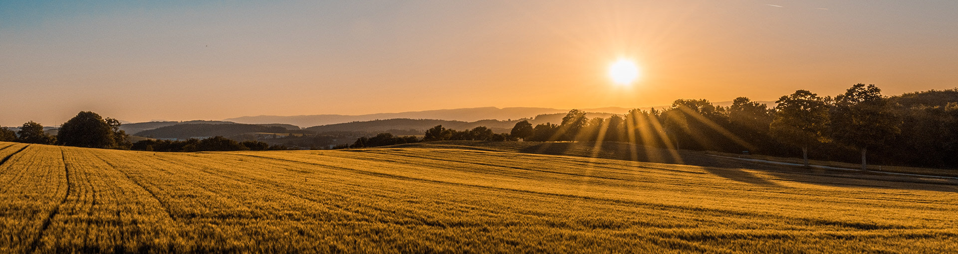 Agricultural property solicitors