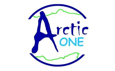 Arctic One